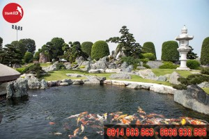 Hồ Cá Koi Nhật Bản tỉnh Hậu Giang, ho ca Koi Nhat Ban tinh Hau Giang