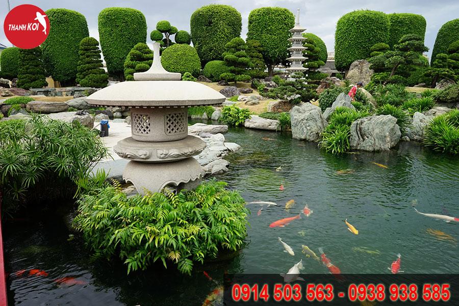 Hồ Cá Koi Nhật Bản tỉnh Đồng Tháp, ho ca Koi Nhat Ban tinh Dong Thap