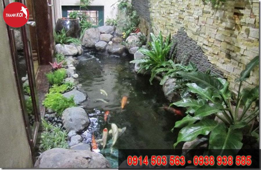 hồ cá koi sân thượng, ho ca koi san thuong
