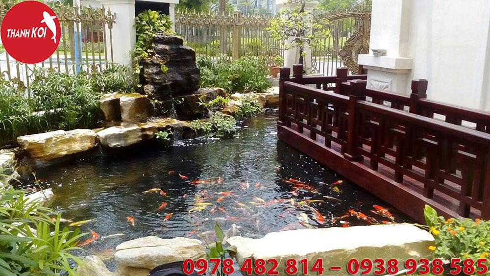 Hồ Cá Koi Nhật Bản Thành Phố Nha Trang, ho ca Koi Nhat Ban thanh pho Nha Trang