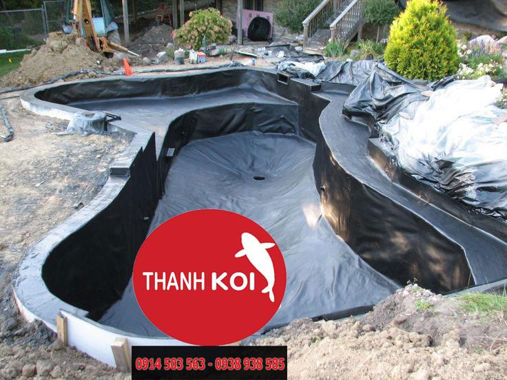 cải tạo và sửa chữa hồ cá koi