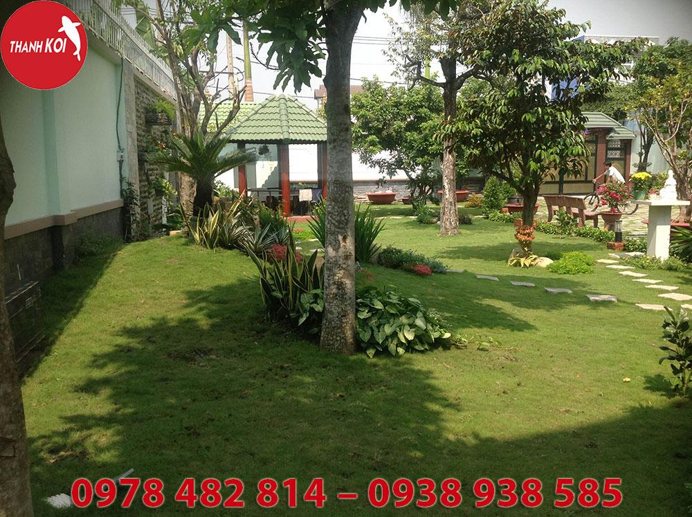 Tiểu cảnh sân vườn, tieu canh san vuon