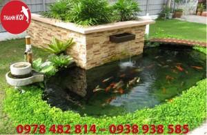 Thiết kế hồ cá koi, tiểu cảnh sân vườn, Hòn non bộ, Hồ cá Koi sân vườn, Hồ cá koi đẹp