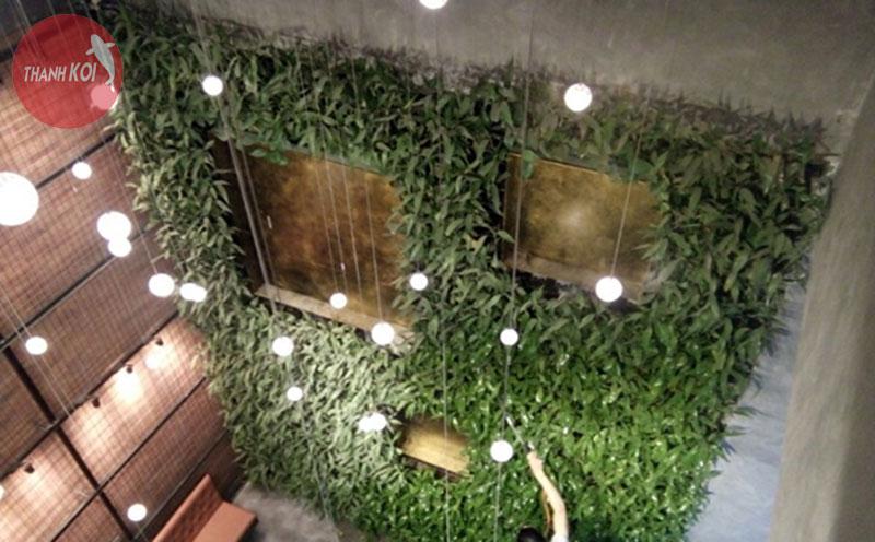 Thiết kế thi công vườn trên tường