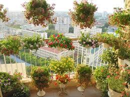 Tiểu cảnh sân vườn quận Tân Bình