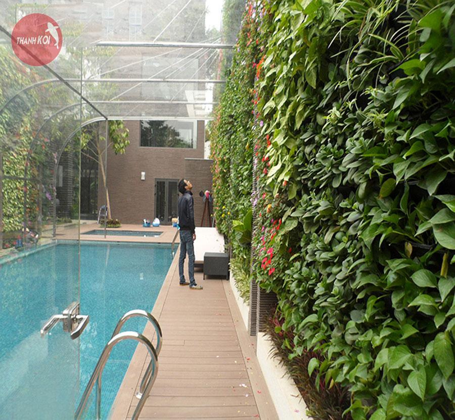 Vườn thẳng đứng trong hồ bơi