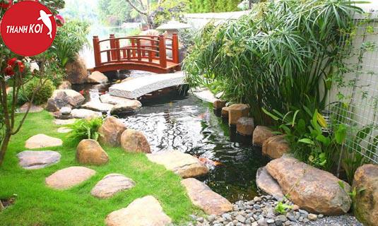 6 cách làm cho nước trong hồ các koi không bị đục đạt hiệu quả cao