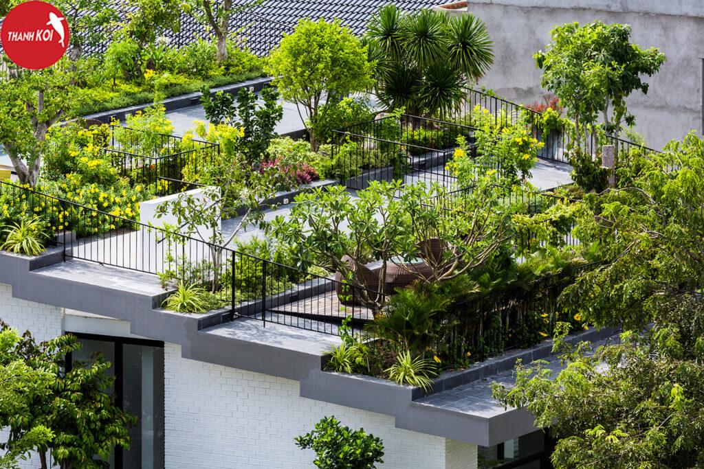 6 lợi ích của khu vườn tiểu cảnh nằm trên sân thượng