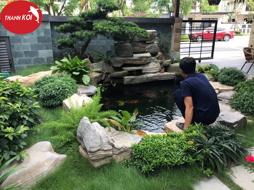 Hướng dẫn chi tiết các bước xây dựng hồ cá koi đơn giản tại nhà