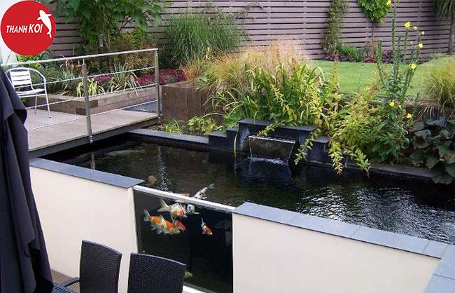 Tư vấn thiết kế hồ cá koi trên sân thượng đúng chuẩn